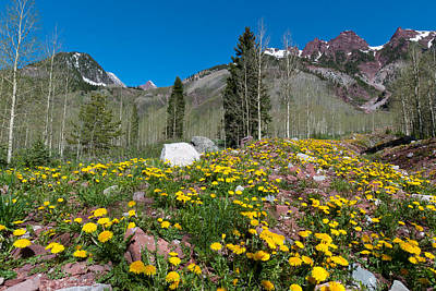 Photograph - Spring Rocky Mountain Landscape by Cascade Colors