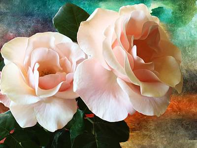 Royalty Free Images Photograph - Spring Roses by Gabriella Weninger - David