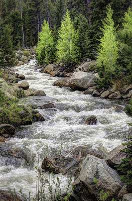 Photograph - Spring Runoff by G Wigler