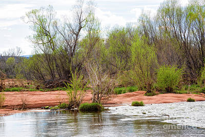 Photograph - Spring Runoff by Jon Burch Photography