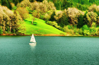 Photograph - Spring Sailing by Dee Browning