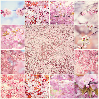 Photograph - Spring Sakura Bloom. Mosaic Collage by Jenny Rainbow