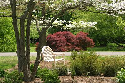 Spring Seating Art Print by Living Color Photography Lorraine Lynch