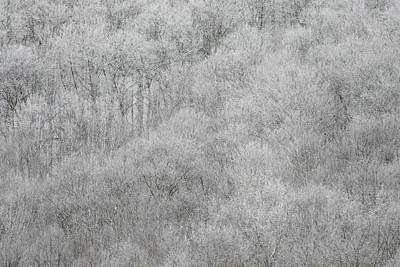 Photograph - Spring Snow #1 by Van Sutherland