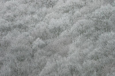 Photograph - Spring Snow #2 by Van Sutherland