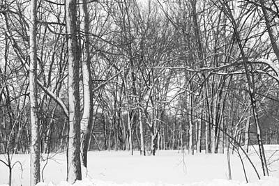 Photograph - Spring Snow In The Park by Kathy M Krause