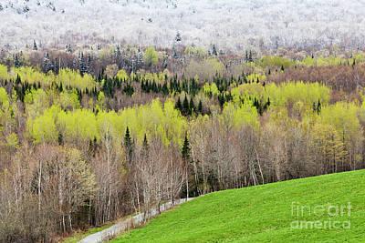 Photograph - Spring Snow Landscape by Alan L Graham