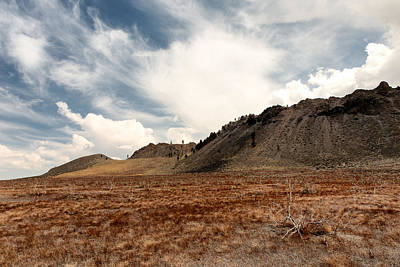 Eriogonum Photograph - Spring Storm Mono Craters Ca by Troy Montemayor