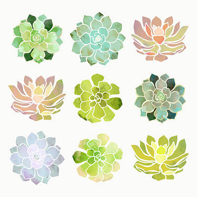 Lime Digital Art - Spring Succulents by Spacefrog Designs