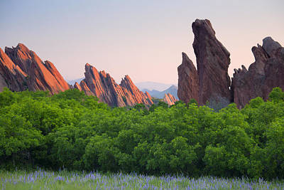 Spring Sunrise At Roxborough Art Print by Morris  McClung