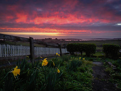 Photograph - Spring Sunrise In Ireland by James Truett