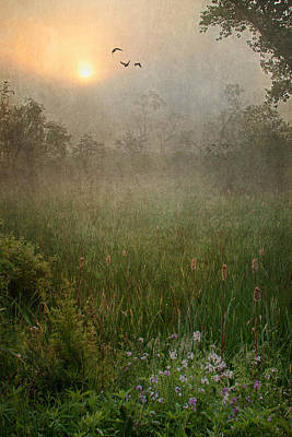 Spring Sunrise In The Valley Art Print