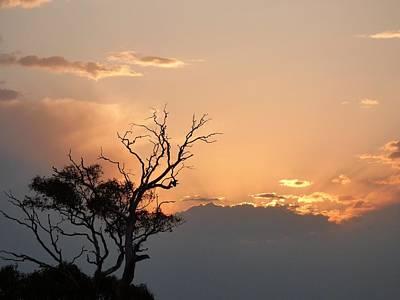 Photograph - Spring Sunset Down Under by Jennifer Baulch