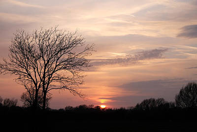 Photograph - Spring Sunset by Mark Severn