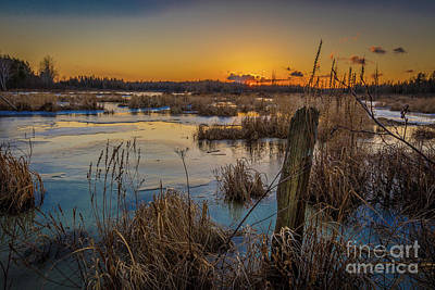 Photograph - Spring Sunset by Roger Monahan