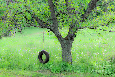 Photograph - Spring Swing by Alan L Graham