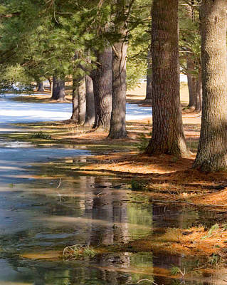 Photograph - Spring Thaw  by Betty  Pauwels