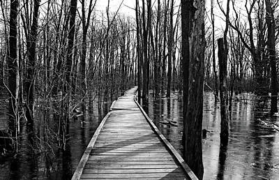 Photograph - Spring Thaw Black And White by Debbie Oppermann