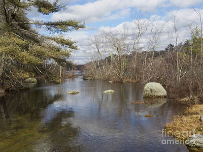 Photograph - Spring Thaw by Lili Feinstein