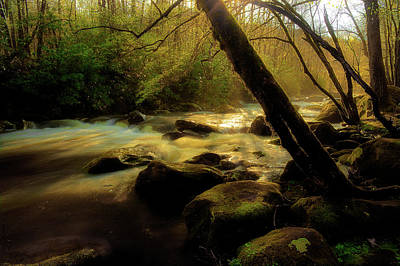River Scenes Photograph - Spring Time Along The River by Mike Eingle