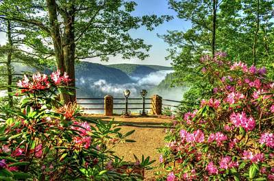 Photograph - Spring Time At Colton Point State Park by Bernadette Chiaramonte