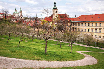 Photograph - Spring Time In Prague. Petrin Hill And Mala Strana by Jenny Rainbow