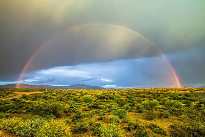 Photograph - Spring Time In The Desert by Stacy LeClair