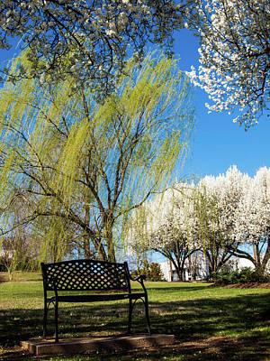 Photograph - Spring Time by Randy Sylvia