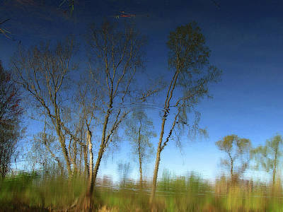 Photograph - Spring Time Reflection by Scott Hovind