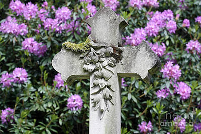 Photograph - Spring Time Religion by Terri Waters