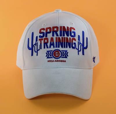 Photograph - Spring Training In Mesa Cap by Greg Thiemeyer