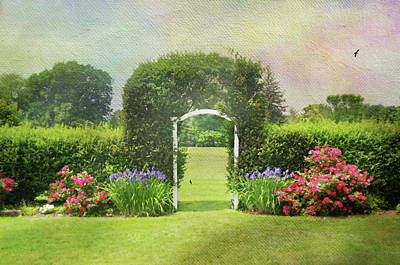 Photograph - Spring Trellis by Diana Angstadt
