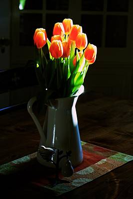 Photograph - Spring Tulips by Eric Tressler