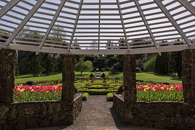 Photograph - Spring Tulips Garden Gazebo by Terry DeLuco