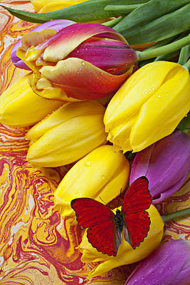 Table Cloth Photograph - Spring Tulips by Garry Gay