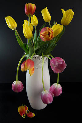 Blue Hues - Spring Tulips in White Vase - Black Background by Patti Deters