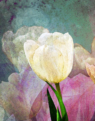 Library Photograph - Spring Tulips by Moon Stumpp