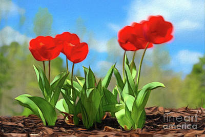 Photograph - Spring Tulips by Patrick M Lynch