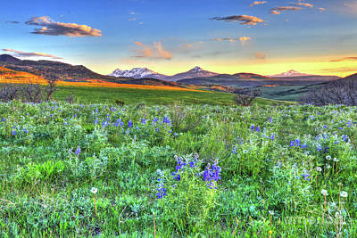 Photograph - Spring View by Scott Mahon