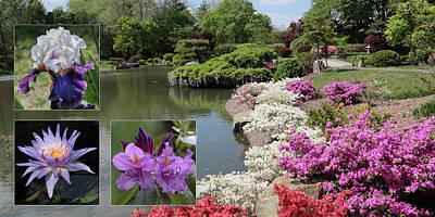 Photograph - Spring Walk by Rau Imaging