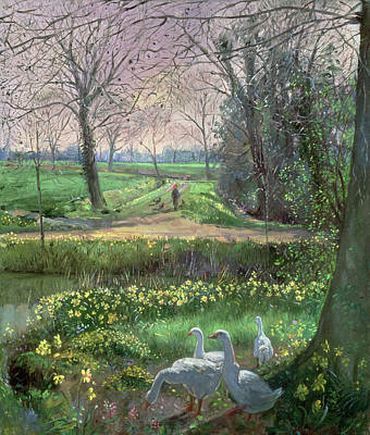 Daffodils Painting - Spring Walk by Timothy Easton