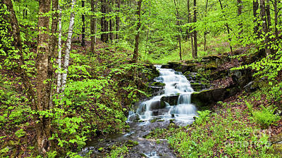 Photograph - Spring Waterfall by Alan L Graham