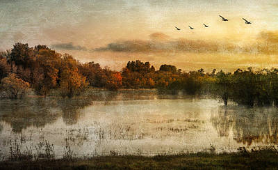 Photograph - Spring Wetlands by Don Schwartz