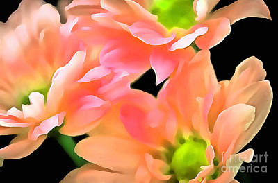 Daisy Photograph - Spring Whispers by Krissy Katsimbras