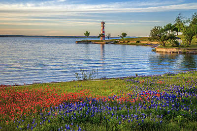 Photograph - Spring Wildflowers Of Lake Buchanan by Lynn Bauer