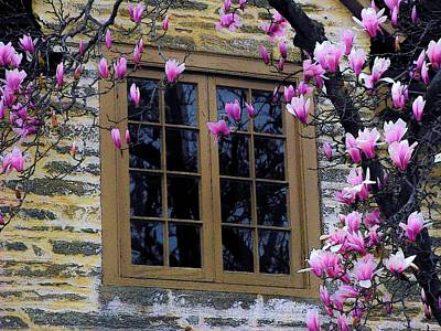 Upperville Photograph - Spring Window by Joyce Kimble Smith
