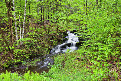 Photograph - Spring Woodland Waterfall by Alan L Graham