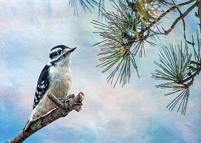Photograph - Spring Woodpecker by Cathy Kovarik