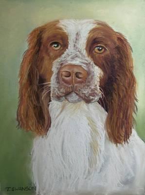 Pastel - Springer Spaniel by Joan Swanson