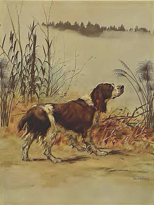 Photograph - Springer Spaniel Out For A Hunt - Watercolor by Ericamaxine Price